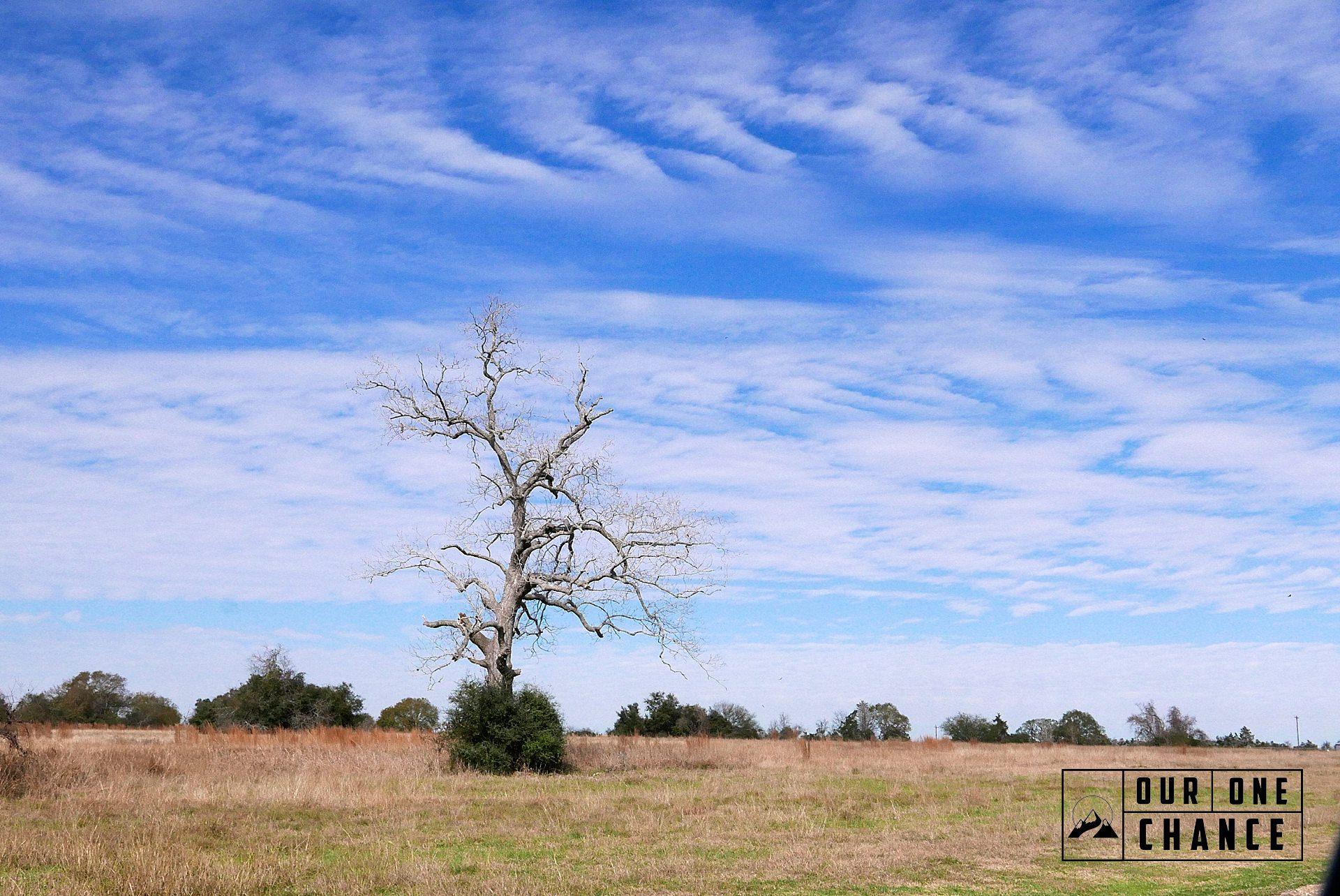 RV Across the Country Texas_0028