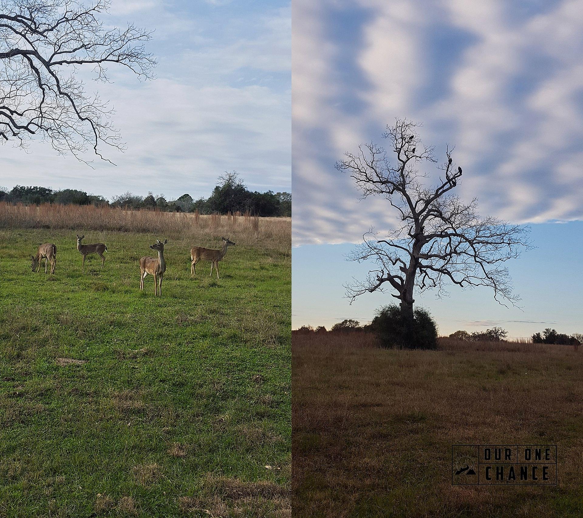 RV Across the Country Texas_0038